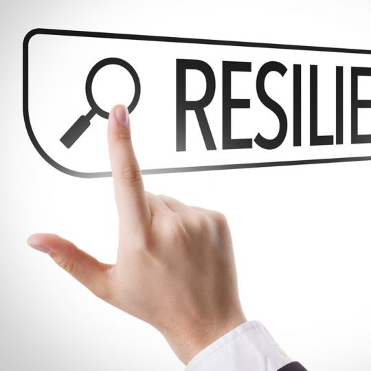 Resilience – Adapt to change